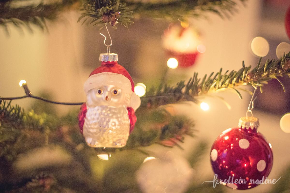 2015_11_05_weihnachtsvorbereitungen_05
